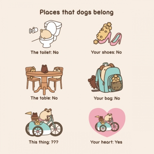 Открытка Places that dog belong